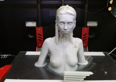 The Bearded Lady ;-) . Printed in ABS on the R2X.