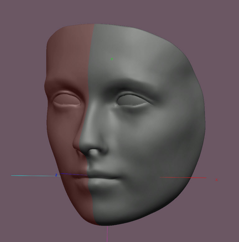 The refined scanned mesh ready for 3D printing